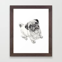 Seymour the Pug Framed Art Print