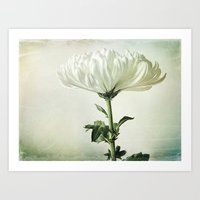 One - Susan Weller Art Print