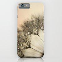 Peach & Dandy iPhone 6 Slim Case