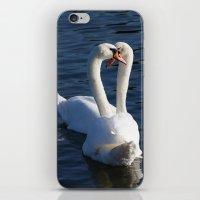 Swan Courtship  iPhone & iPod Skin