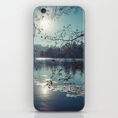 India - Blue lake iPhone & iPod Skin