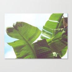 Cabana Life, No. 1 Canvas Print