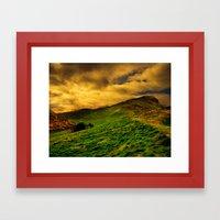 Grassy Field Framed Art Print