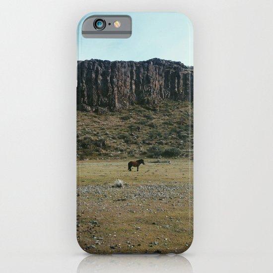 Rock Pasture Pony iPhone & iPod Case