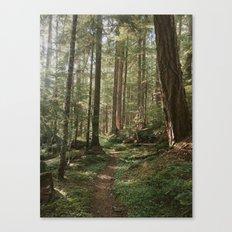 Wonderland Forest Trail Canvas Print