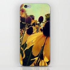 Sunshine and Flowers iPhone & iPod Skin