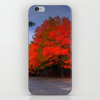 Falling for Red iPhone & iPod Skin