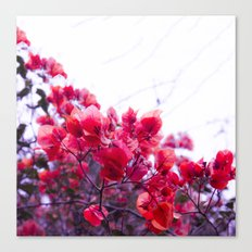 Touch of Love Canvas Print
