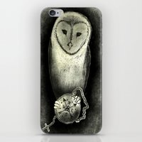 Owl Knows iPhone & iPod Skin