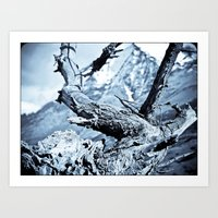 Nature dry. Art Print