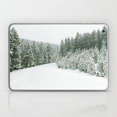 Winter Road Laptop & iPad Skin