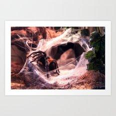 Lady Tarantula Art Print
