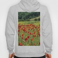 Poppies, Poppies, Poppies Hoody