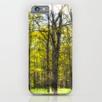 Peace In The Forest iPhone 6 Slim Case