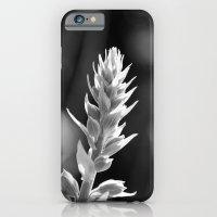 Early Fox Glove  iPhone 6 Slim Case