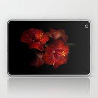 Scarlet Amaryllis Laptop & iPad Skin
