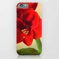 My Christmas flower Slim Case iPhone 6s