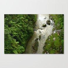 Jungle Floor Canvas Print