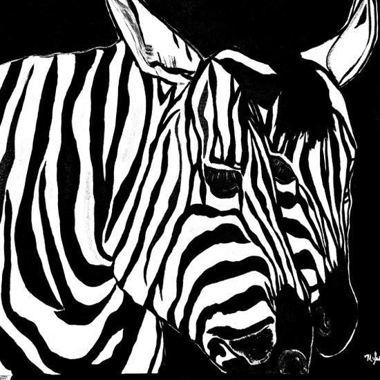 Zebra Black and White #2 Canvas Print