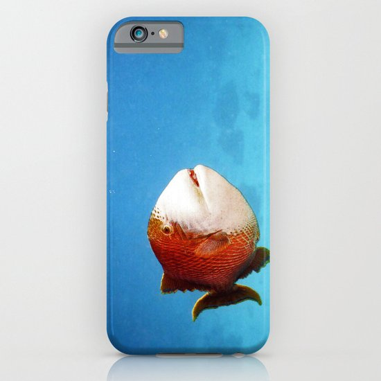 Tropical fish iPhone & iPod Case