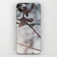 hanging iPhone & iPod Skin