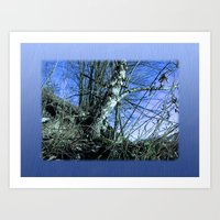 Early Spring, Starry Night Art Print