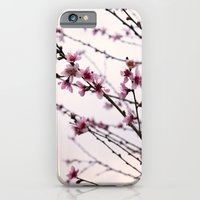 iPhone & iPod Case featuring Signs Of Spring by Ashley Marcy