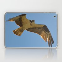 Osprey In Flight Laptop & iPad Skin