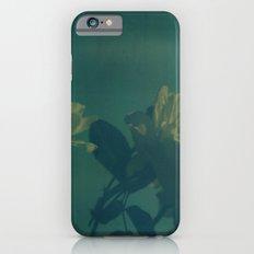 Blue Roses Polaroid Slim Case iPhone 6s