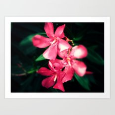 Pink Flowers Revamped Art Print