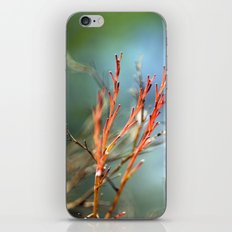 All Things Marvelous iPhone & iPod Skin