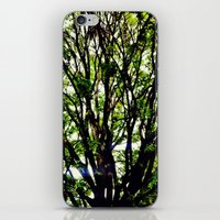 Leaves and Branches 3 iPhone & iPod Skin