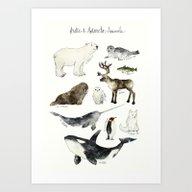Arctic & Antarctic Anima… Art Print