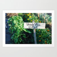 Weeds Free U-Pick Art Print