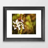Gold Butterfly Framed Art Print