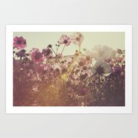 October Blooming 02 Art Print