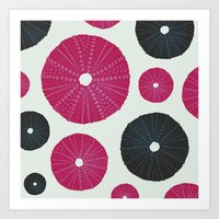Sea's Design - Urchin Skeleton (Pink & Black) Art Print