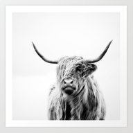 Portrait Of A Highland C… Art Print