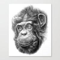 Wise Chimp SK067 Canvas Print