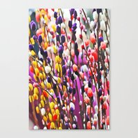 Abstract Pussy Willows Canvas Print