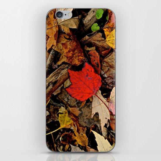 The Fallen iPhone & iPod Skin