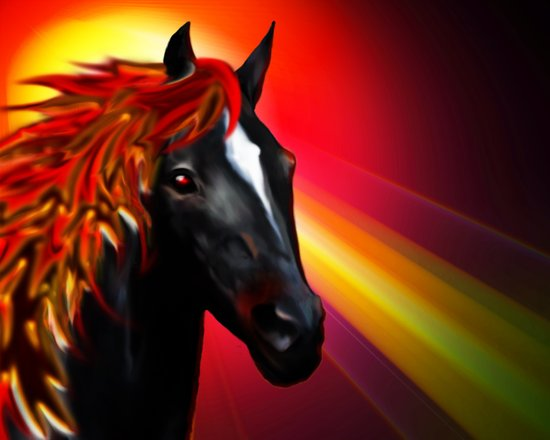 Black Horse on Red Sunlight Art Print