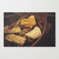 Minerals Canvas Print