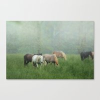Out In The Rain Canvas Print