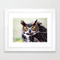 Great Horned Owl Framed Art Print