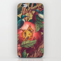 Ragged Wood iPhone & iPod Skin