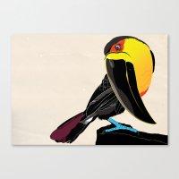 Coco Canvas Print