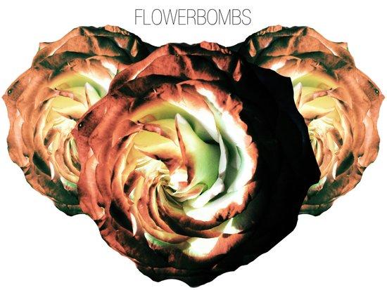 Flowerbombs Art Print