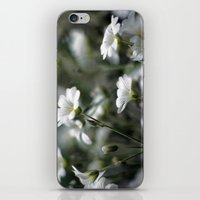 Snow In Summer iPhone & iPod Skin