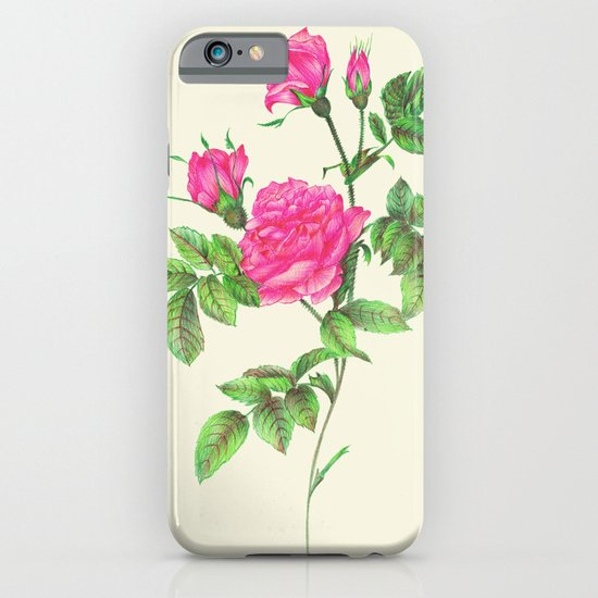 Ballpoint Pen, Redouté's Roses iPhone & iPod Case